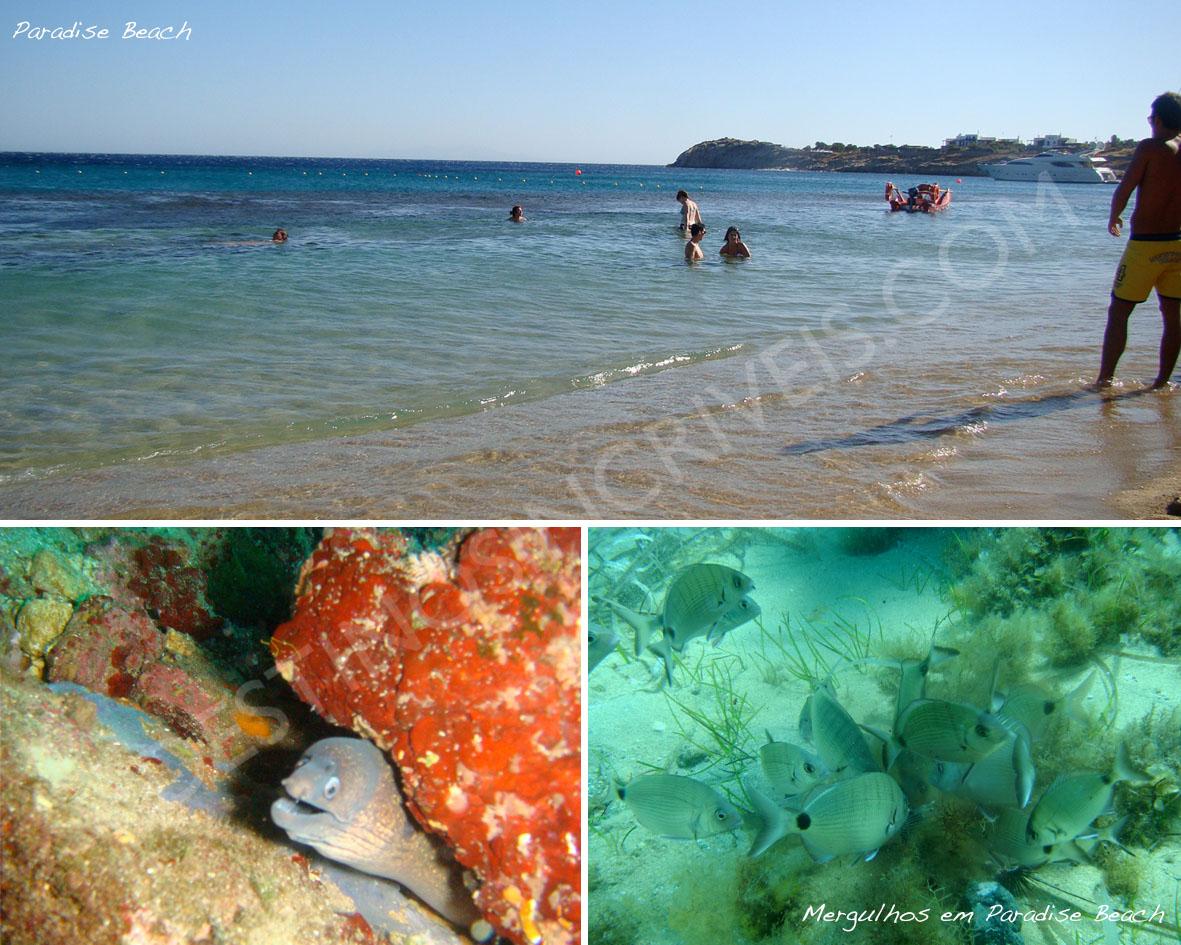 Paradise_Mykonos